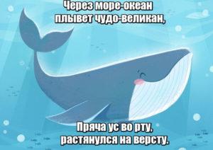 Через море-океан плывет чудо-великан. Пряча ус во рту, растянулся на версту. Кит.