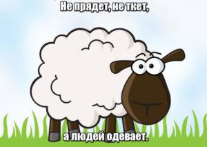 Не прядет, не ткет, а людей одевает. Овца.
