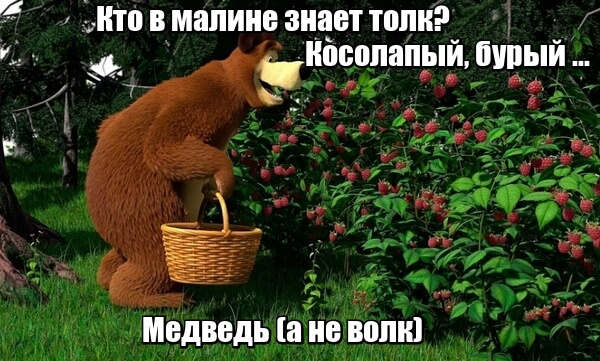 Кто в малине знает толк? Косолапый, бурый ... Медведь, а не волк.