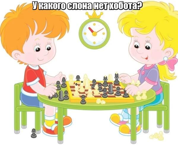 У какого слона нет хобота? У шахматного.