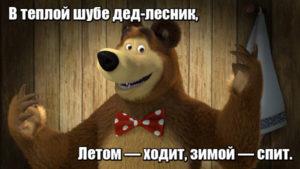 В теплой шубе дед-лесник, Летом — ходит, зимой — спит. Медведь.