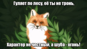 Гуляет по лесу, её ты не тронь, характер не честный, а шуба — огонь! Лиса.