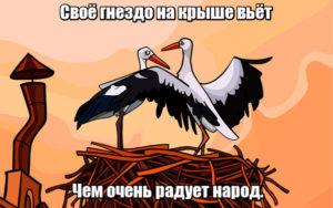 Своё гнездо на крыше вьёт, чем очень радует народ. Аист.