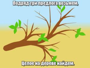 Подряд три предлога возьмем, Целое на дереве найдем. С-у-к.