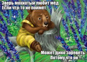 Зверь мохнатый любит мёд. Если что-то не поймёт, Может дико зареветь, Потому что он – ... Медведь.