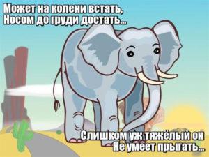 Может на колени встать, Носом до груди достать… Слишком уж тяжёлый он- Не умеет прыгать... Слон.