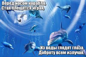 Перед носом корабля, Стая плещется играя, Из воды глядят глаза, Доброту всем излучая. Дельфины.