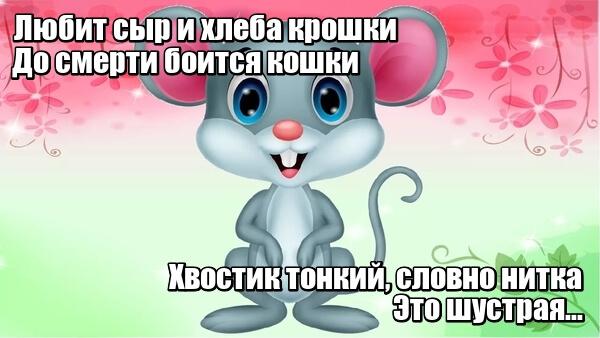 Любит сыр и хлеба крошки, до смерти боится кошки. Хвостик тонкий, словно нитка. Это шустрая...Не улитка, а мышка.