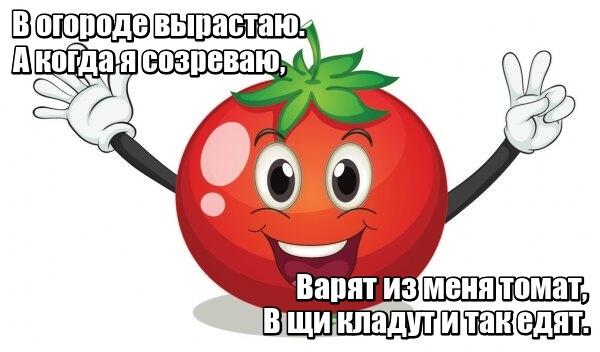 В огороде вырастаю. А когда я созреваю, Варят из меня томат, В щи кладут И так едят. Помидор.