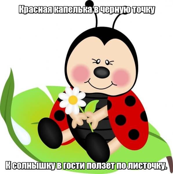 Красная капелька в черную точку К солнышку в гости ползет по листочку. Божья коровка