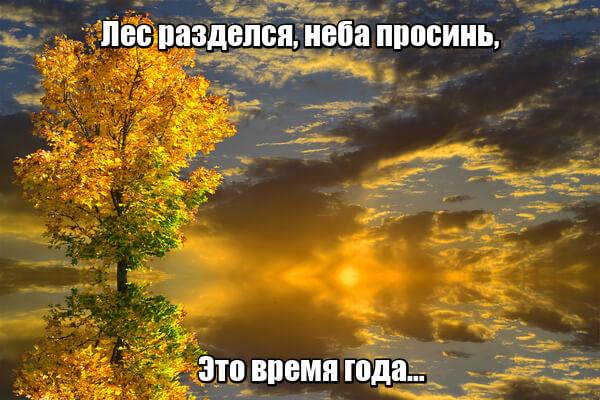 Лес разделся, неба просинь, Это время года… Осень