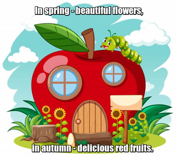 In spring - beautiful flowers, in autumn - delicious red fruits. Весной - красивые цветочки, осенью - вкусные красные плоды. Яблоко.