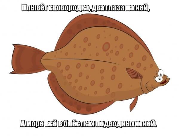 Плывёт сковородка, Два глаза на ней, А море всё в блёстках Подводных огней. Камбала.