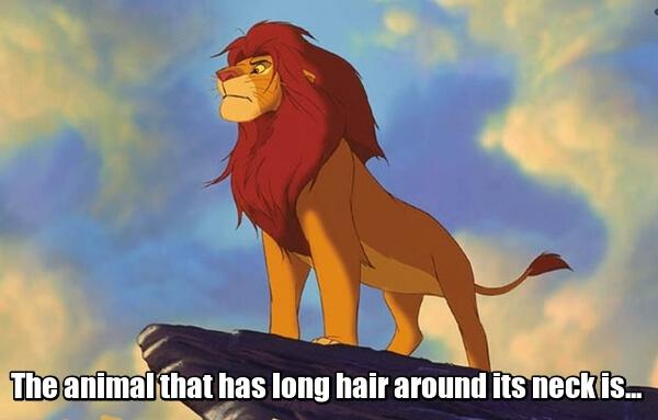 The animal that has long hair around its neck is... Животное с длинной шерстью на шее.. Лев.