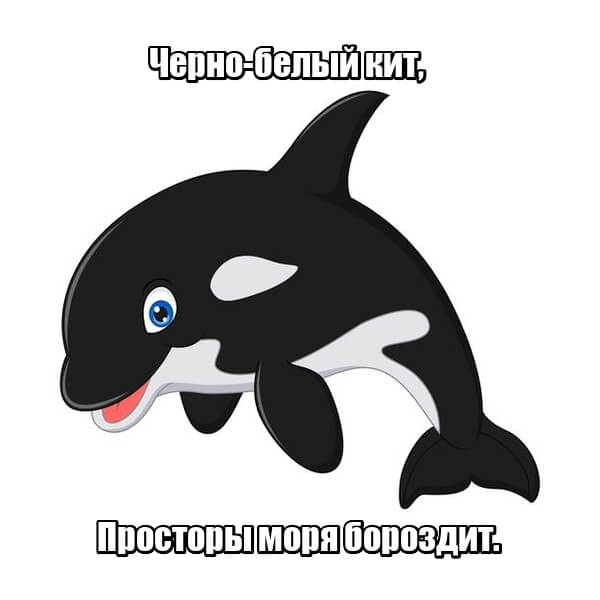 Черно-белый кит, Просторы моря бороздит. Косатка.