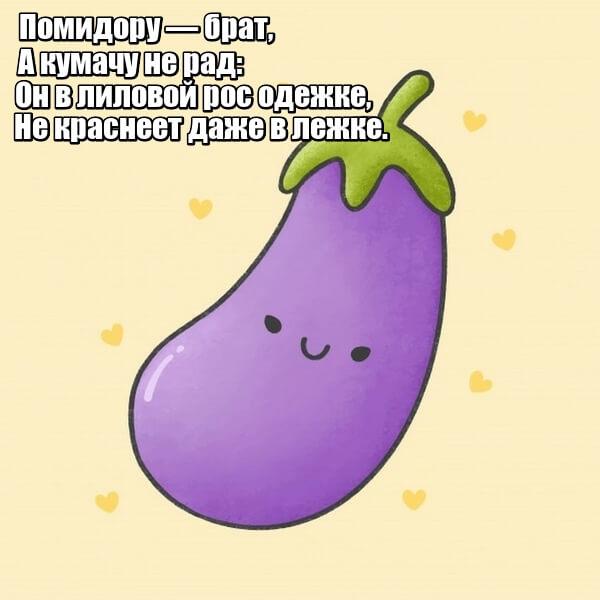 Помидору — брат, А кумачу не рад: Он в лиловой рос одежке, Не краснеет даже в лежке. Баклажан.