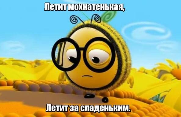 Летит мохнатенькая, Летит за сладеньким. Пчела.