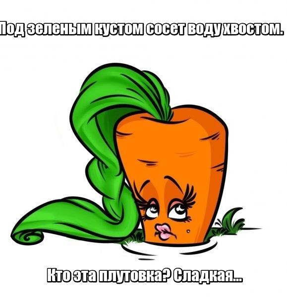 Под зеленым кустом сосет воду хвостом. Кто эта плутовка? Сладкая... Морковь.