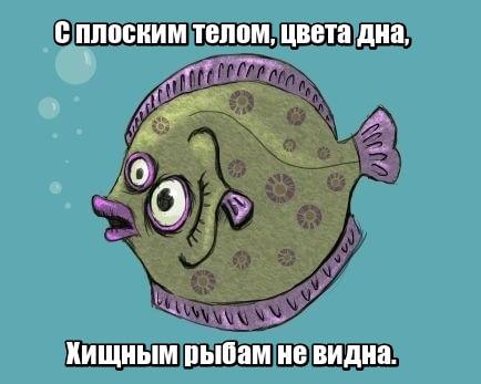 С плоским телом, цвета дна, Хищным рыбам не видна. Камбала.