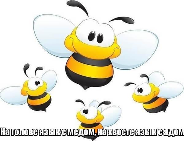 На голове язык с медом, на хвосте язык с ядом. Пчела.