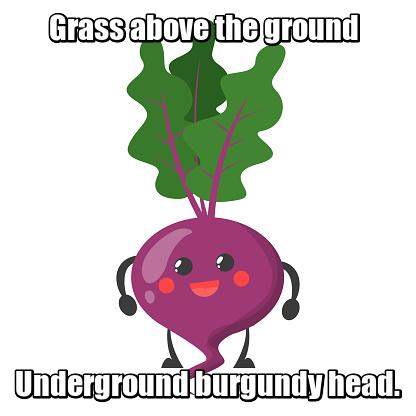 Grass above the ground Underground burgundy head. Трава над землей Подземлей бордовая голова. Свекла.