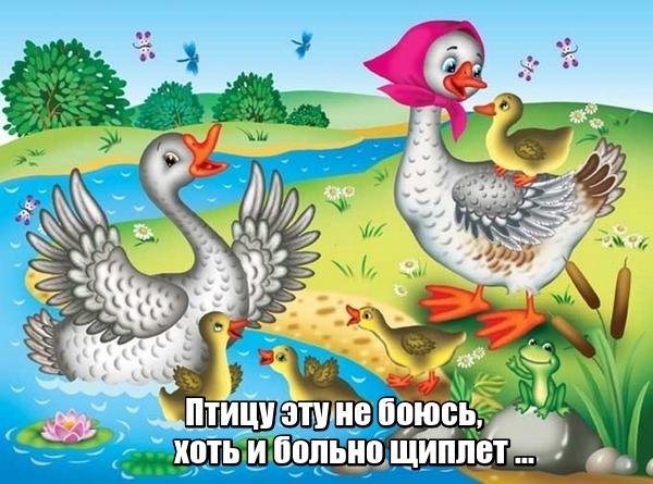 Птицу эту не боюсь, хоть и больно щиплет ... Гусь.