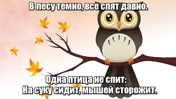 В лесу темно, Все спят давно. Одна птица не спит: На суку сидит, Мышей сторожит. Сова