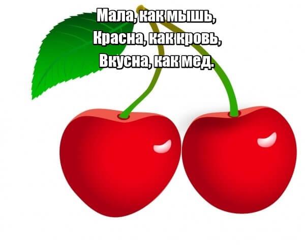 Мала, как мышь, Красна, как кровь, Вкусна, как мед. Вишня.