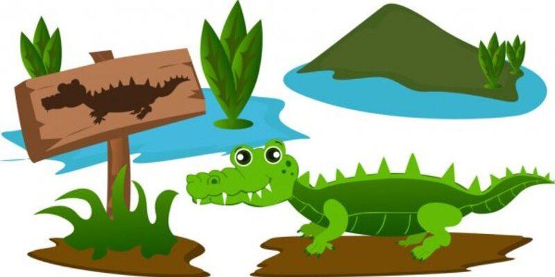 Зеленый крокодил в болоте. Как познакомить детей с разными животными.