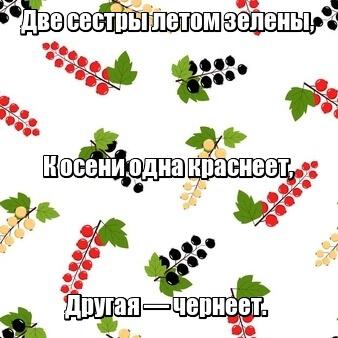 Две сестры летом зелены, К осени одна краснеет, Другая — чернеет. Смородина.
