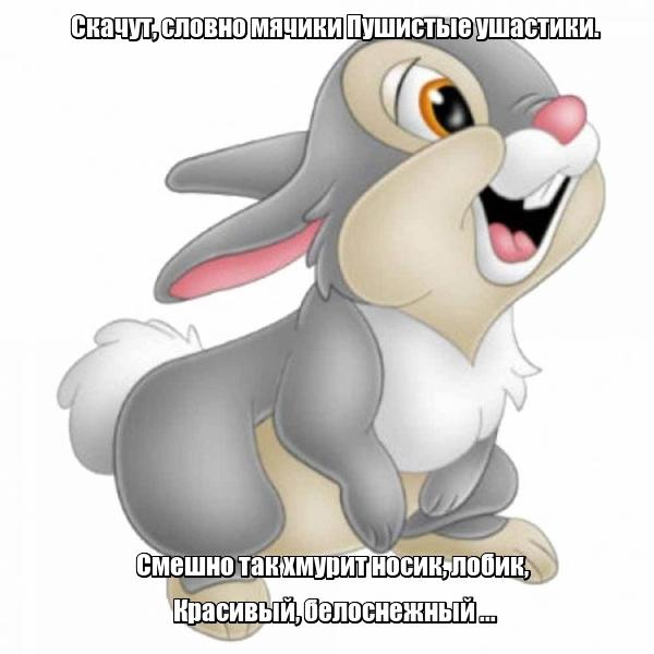 Скачут, словно мячики Пушистые ушастики. Смешно так хмурит носик, лобик, Красивый, белоснежный ... Кролик.