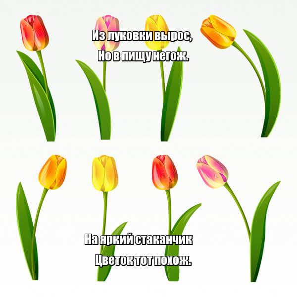 Из луковки вырос, Но в пищу негож. На яркий стаканчик Цветок тот похож. Тюльпаны.