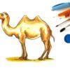 Рисунок верблюда и кисточки. Какие загадки про животных понравятся ребенку.