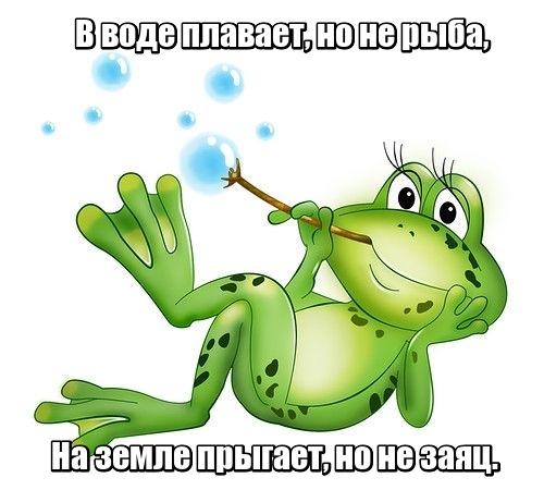 В воде плавает, но не рыба, На земле прыгает, но не заяц. Лягушка