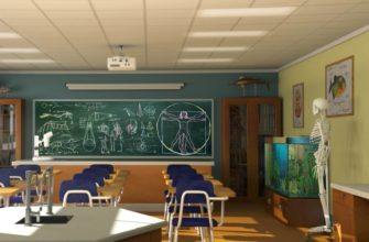 Школьный кабинет. Подборка загадок про биологии для школьников