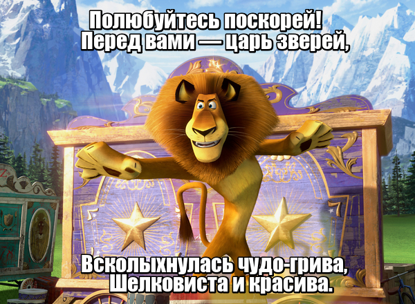 Полюбуйтесь поскорей! Перед вами - царь зверей, Всколыхнулась чудо-грива, Шелковиста и красива. Лев