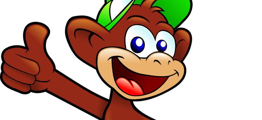 Милая обезьянка. Загадки для детей про обезьяну