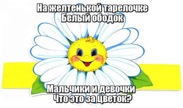 На желтенькой тарелочке Белый ободок Мальчики и девочки Что это за цветок? Ромашка