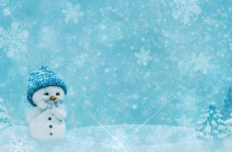 Снеговичок. Коллекция загадок про снеговика