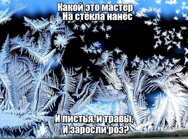 Какой это мастер На стёкла нанёс И листья, и травы, И заросли роз? Мороз