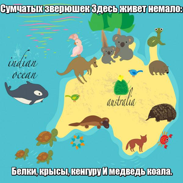 Сумчатых зверюшек Здесь живет немало: Белки, крысы, кенгуру И медведь коала. Австралия.