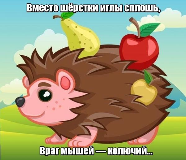 Вместо шёрстки иглы сплошь, Враг мышей — колючий... Еж.