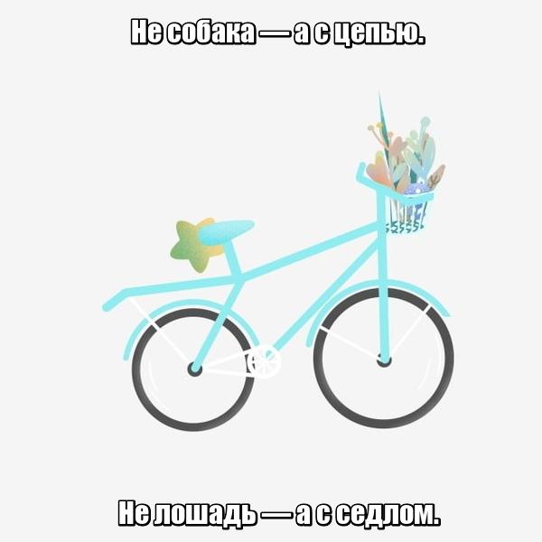 Не собака — а с цепью. Не лошадь — а с седлом. Велосипед.