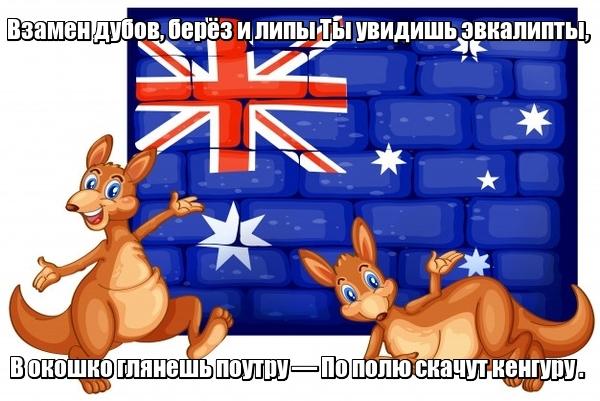 Взамен дубов, берёз и липы Ты увидишь эвкалипты, В окошко глянешь поутру — По полю скачут кенгуру . Австралия.