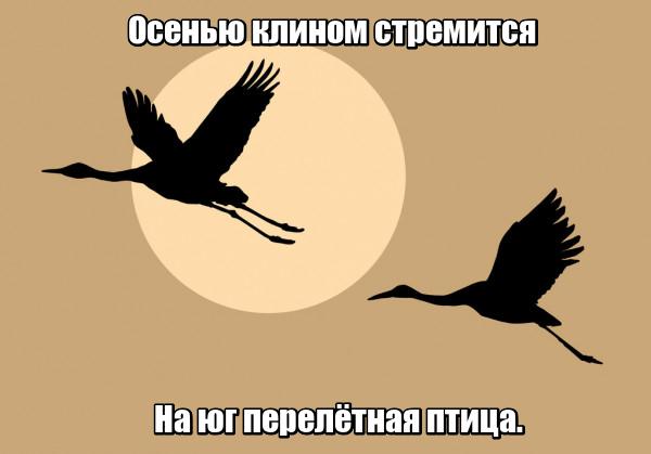Осенью клином стремится На юг перелётная птица. Журавль.