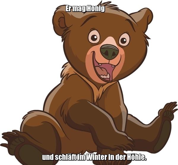 Er mag Honig und schläft im Winter in der Höhle. Он любит мед и спит зимой в берлоге. der Bär - медведь.