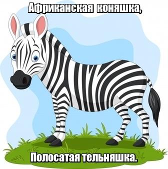 Африканская коняшка, Полосатая тельняшка. Зебра.