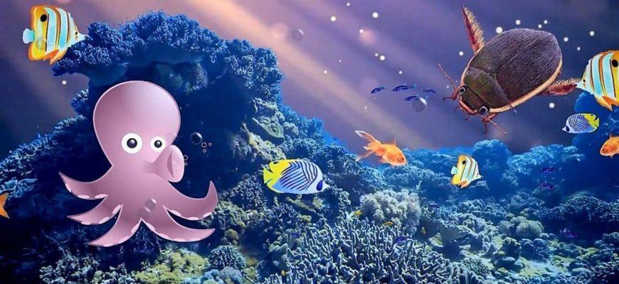 Подводный мир. Загадки про осьминога для малышей.
