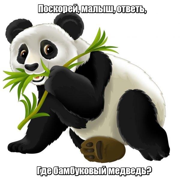 Поскорей, малыш, ответь, Где бамбуковый медведь? Панда.