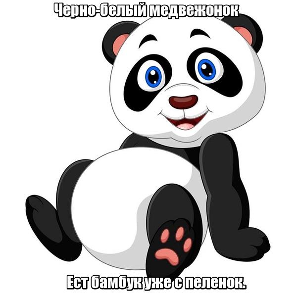 Черно-белый медвежонок Ест бамбук уже с пеленок. Панда.